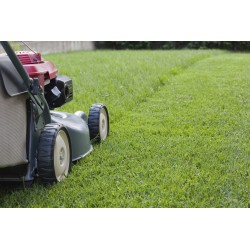 Mow Lawn, Yard Size: 5,001 to 10,000 Square Feet